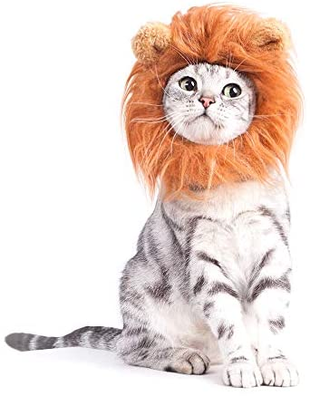 GALOPAR Pet Costume Dogs or Cats Outfits Beauty and The Beast Costume for Halloween Christmas Cosplay Parties Accessories